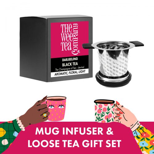 Mug Infuser and Loose Leaf Tea Gift Set